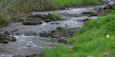 Mooi Achterhoek: Naober wandeling Beckum rond 'Het Altena' - Fietsen en wandelen…
