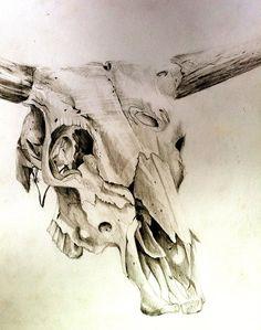 Cow Skull by Lucky978.deviantart.com on @deviantART