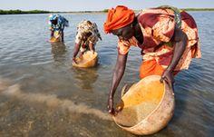 I diritti negati delle donne contadine | Slow Food - Buono, Pulito e Giusto.