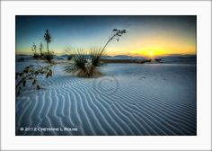 Full Moon at White Sands, New Mexico – 2 Day Photo Workshop White Sands New Mexico, White Sands National Monument, Full Moon, Workshop, Waves, Beach, Photography, Outdoor, Harvest Moon