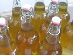 Yankee Kitchen Ninja: Making hard cider: part 1 Brewing Recipes, Beer Recipes, Beer Brewing, Home Brewing, Making Hard Cider, How To Make Mead, Coffee With Alcohol, Hard Apple Cider, Homemade Liquor