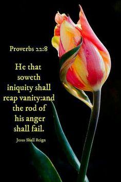 Proverbs 22:8 KJV