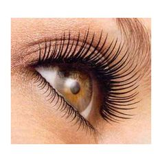 How to Get Beautiful, Long, Thick, Seductive Eyelashes ❤ liked on Polyvore