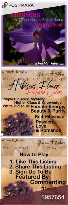 12 Best Purple Hibiscus Images In 2014 Purple Hibiscus Beautiful