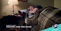 "Preview the UP premiere movie ""Dancer And The Dame"" starring Billy Gardell."