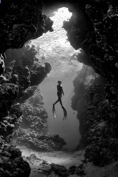 breathtaking underwater photography black and white portrait scuba light landscape