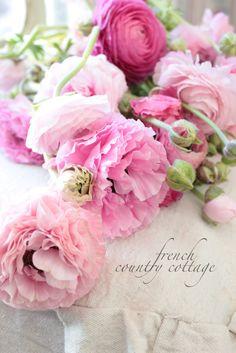 S ℎ a b b y . C ℎ i c  -Gorgeous flowers.