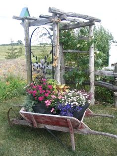Ideas For Using Containers In The Garden