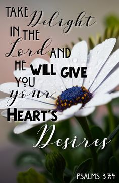 Psalms 37:4 Take Delight in the Lord and He will give you your heart's desires.