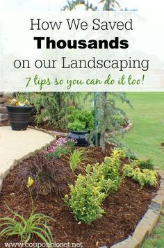 Use these money saving landscaping tips to save big on landscaping. 7 Money saving landscaping tips you will love. Learn how to save money on landscaping. Save thousands of dollars with these money…MoreMore Outdoor Landscaping, Front Yard Landscaping, Backyard Landscaping, Outdoor Gardens, Landscaping Ideas, Landscaping Software, Landscaping Borders, Inexpensive Landscaping, Luxury Landscaping