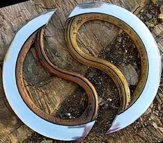 Chakram-- Arie's weapon-- can be put together to form a complete circle