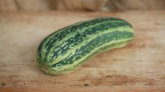 Organic Marrow from Purton House Organics Online - Buy Organic Marrow from local Purton House Organics online and get it delivered to your London address. Buy now: http://po.st/e0TPAb