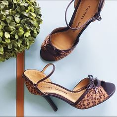 """NWOT Chinese laundry leopard heels Gorgeous peep toe pumps with an ankle strap and 3"""" heel. Bow detailing at Front make these leopard pumps feminine and classic. Man made material. Never worn. Chinese Laundry Shoes Heels"""