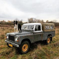 Border Collie Stage One Land Rover Serie 1, Land Rover Defender, Expedition Vehicle, Range Rover Sport, Border Collie, Pickup Trucks, Offroad, Landing, Cool Photos