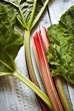 Rhubarb is a vegetable with a unique taste that makes it a favorite in many pies and desserts. Rhubarb is often commonly mistaken to be a fruit but rhubarb is actually a close relative of garden sorrel, and is therefore a member of the vegetable family. Rhubarb is rich in vitamin C and dietary fiber.
