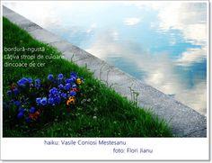 Haiku: Vasile Coniosi Mestesanu