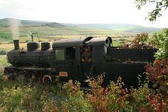 keskenyvágányú vasút... Train, Strollers