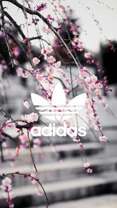 Imagem de adidas, wallpaper, and pink Adidas Backgrounds, Tumblr Backgrounds, Cute Backgrounds, Phone Backgrounds, Wallpaper Backgrounds, Homescreen Wallpaper, Wallpaper Lockscreen, Nike Wallpaper, Tumblr Wallpaper