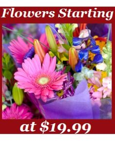 Send the most gorgeous arrangements for the best prices around! FLOWERS FOR LESS THAN $20.00! Each week we offer only the freshest flowers of the highest quality with the best discounts. With this kind of deal, you can make EVERYONE smile during birthdays, anniversaries, holidays, and all occasions! Vase not included.