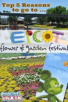 5 Reasons to Go to the Epcot Flower and Garden Festival