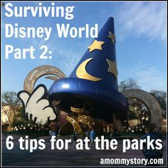 Surviving Disney World Part 2: Tips For At The Parks