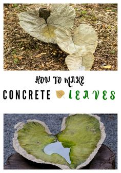 concrete leaf