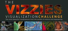 The VIZZIES - Visualization Challenge - The most beautiful visualizations from the worlds of science and engineering