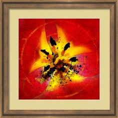 Framed Photo Art Print featuring the photograph Red And Yellow Flower by Judi Saunders. Many styles and colors of frame and mat available.