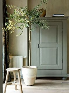 Love colour palette of walls, cupboard, tool, pot plant.  This is so serene.