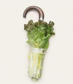 Back to Surrealism Lettuce Umbrella Graphisches Design, Food Design, Surrealism Photography, Art Photography, Conceptual Photography, Advertising Photography, Poesia Visual, Food Humor, Everyday Objects