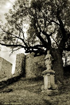 A statue on the grounds of the Castle Devin ruin, in Bratislava, Slovakia overlooking the Danube River.