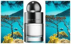 Molton Brown Coastal Cypress and Sea Fennel EDT by Carla Chabert | I Scent you a Day Molton Brown, Perfume Reviews, Ever And Ever, Fennel, How Beautiful, Coastal, Nostalgia, Shampoo, Give It To Me
