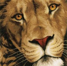 image of King Of Animals Cross Stitch Kit