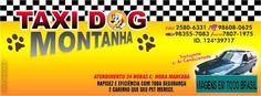 TAXI DOG MONTANHA TRANSPORTE DE ANIMAIS NO RIO DE JANEIRO: TAXI DOG MONTANHA COOPERANDO COM OS RESGATES DA SU...