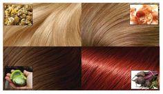 Pinte o cabelo sem química com estas tinturas caseiras e totalmente naturais