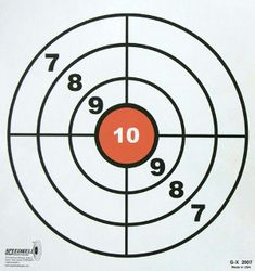 Official Competition And Training Targets - 300x319 - gif