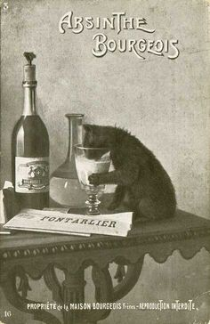 Black and White ad/poster for Absinthe. * * WHOA KITTY, THAT BETTER BE MILK IN THAT GLASS. YOU'D BE IN ORBIT IF IT WASN'T, AND PROBABLY GET BRAIN DAMAGE. ABBIE SOME WICKED LIQUOR.