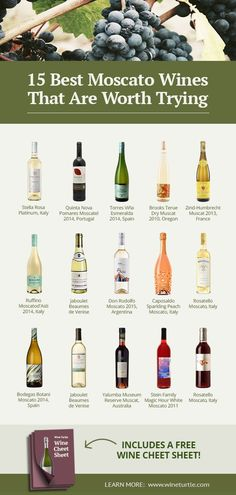 looking for the best moscato wines? In this article, we've put together a list of the best Moscato wines we think you'll love! Check it out now. Best Moscato Wine, Peach Moscato, Peach Wine, Chateauneuf Du Pape, Wine Logo, Wine Guide, Sweet Wine, Wine Decor, Vintage Wine