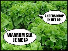Waarom sla je me Funny Marvel Memes, Funny Memes, Funny Kids, Funny Cute, Punny Puns, Walmart Funny, Funny Photoshop, Jokes Quotes, Laugh Out Loud