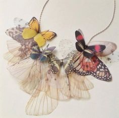Derya Aksoy is an Istanbul-based artist working under the name of Jewelera. the creation of delicate jewelry adorned with butterflies hand-made Butterfly Jewelry, Butterfly Necklace, Butterfly Wings, Delicate Jewelry, Unique Jewelry, Pictures Of Insects, Moth Wings, Insect Art, Textiles