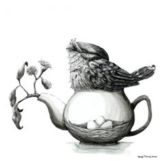 Renee Treml small print - nested frogmouth