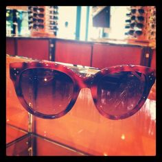 Around The Store: Celine sunnies.