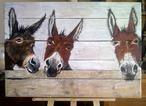 Leuke ezels op oud hout geschilderd staan prachtig tegen de schutting