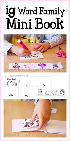 Free IG Word Family Mini Book