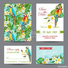 """Invitation or Greeting Card Set - Tropical Birds and Flowers Design tarafından oluşturulmuş """"wooster"""" Telifsiz vektörü en uygun fiyatta Fotolia.com 'dan indirin. Pazarlama projelerinize mükemmel stok vektörü bulmak için, en ucuz online görsel bankasına göz atın!"""