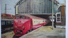 TEE train at The hague