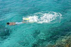 ¿Te asombra el color del agua? Pues, este paisaje es completamente común en las costas caribeñas de México. Si no lo crees, visita la Riviera Maya y compruébalo tú mismo.  http://www.bestday.com.mx/Riviera_Maya/ReservaHoteles/