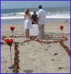 My bbw beach dream