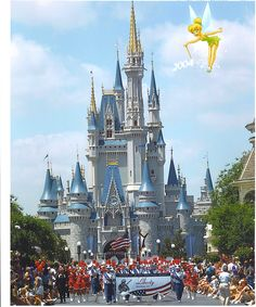 Disney World, FL
