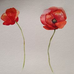 poppies for Cate. Watercolor Poppy Tattoo, Red Poppy Tattoo, Poppies Tattoo, Watercolor Poppies, Red Poppies, Small Poppy Tattoo, Watercolor Painting, Flower Tattoo Foot, Small Flower Tattoos